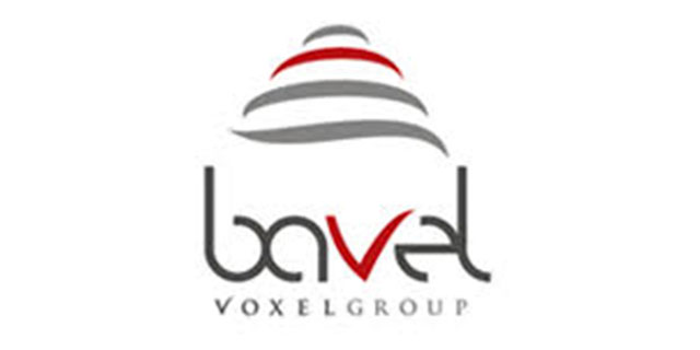 Bavel Voxel Group
